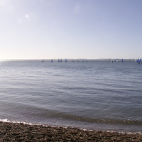 The fleet preparing to race