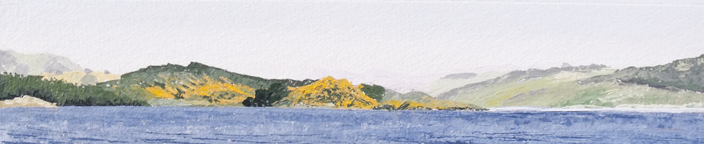 The yellow gorse on Eilean Mor, Across Loch Gilp with Loch Fyne beyond