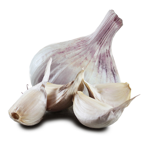 1021_iberian_seed_garlic.jpg