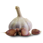 1065_bohemian_rose_seed_garlic_main.jpg