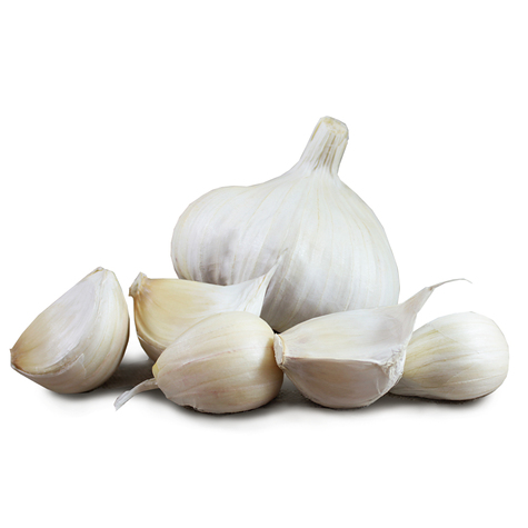 Vallelado Wight seed garlic