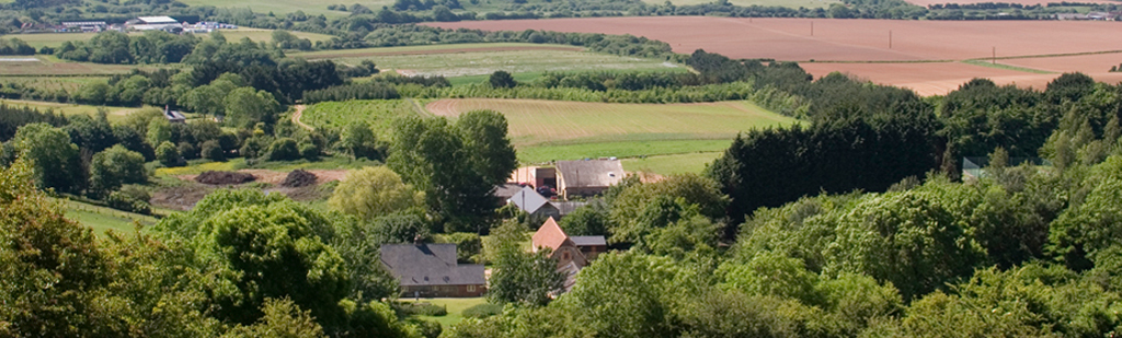 The Garlic Farm from the downs