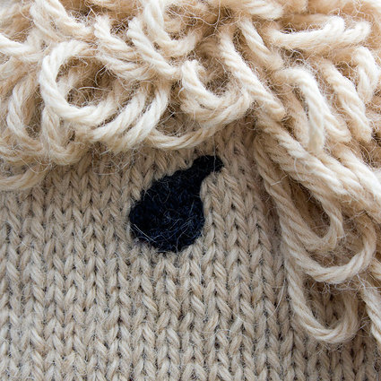 Alpaca Hat eye detail