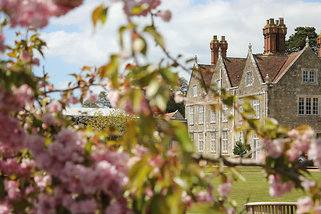 Spring blossom at the Manor