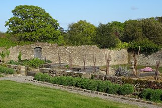 Early spring in the walled garden