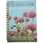 Garlic growing guide
