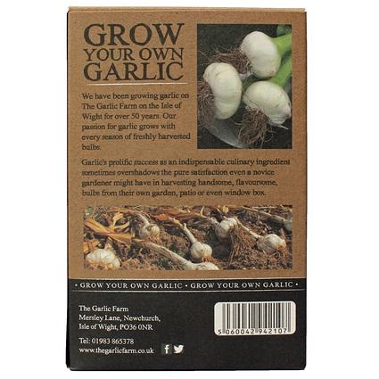 Garlic growing kit side