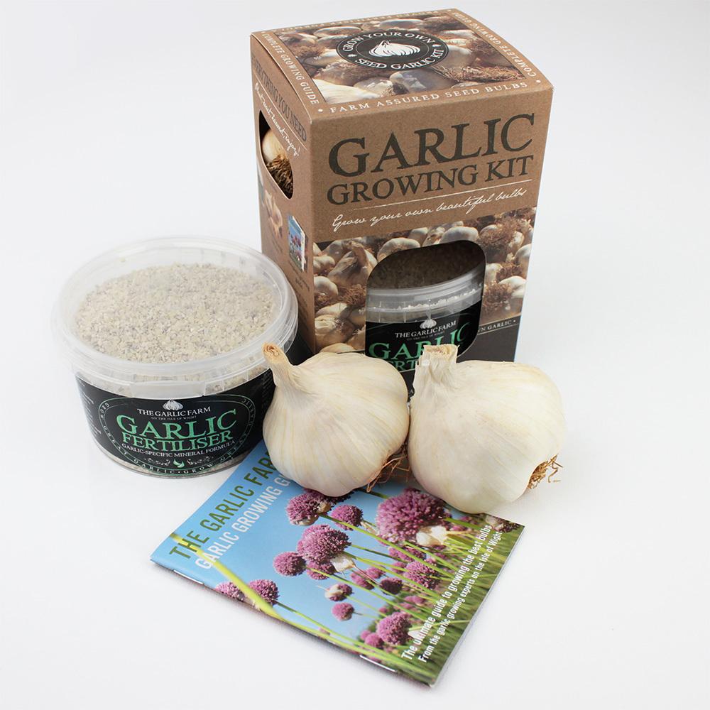 Garlic Growing Kit :: Products :: The Garlic Farm