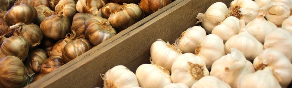 Garlic gets the girl