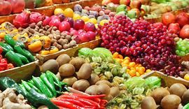 Pet worth Farmers Market