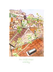 CliffSteps.jpg