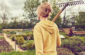 Guardian gardening