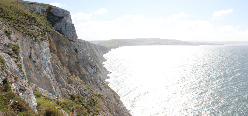 Tennyson Down Cliffs