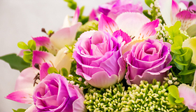 tangmere flower club