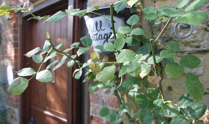 Mill Cottage front door.jpg