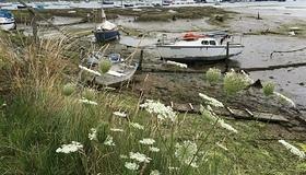 harbour 5.jpg