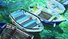 boats 2 300 cmyk.jpg