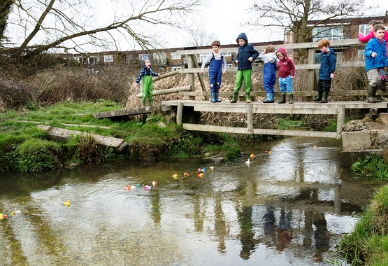 (C) Paul Adams 20180403_DSC6041+ Duck Race - Ducks under bridge 2.jpg