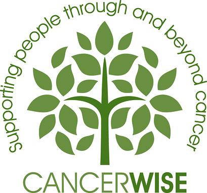 20121001_concerwise_logo_rgb (5) (1).jpg