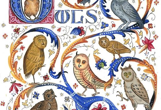 Medieval Owlery - WM.jpg