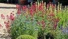 bosham gardens 2
