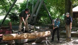 HLW-Wood.jpg