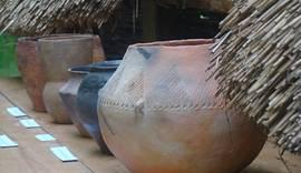 HLW-Archaeology-Saxon.jpg