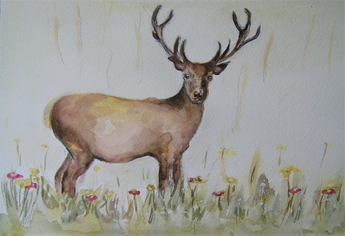 Animals in the Countryside Watercolour Workshop