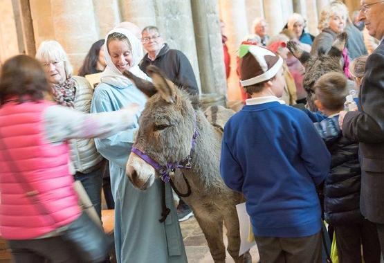 Donkey (002).jpg