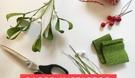 Paper mistletoe workshop1.png