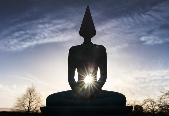 Meditator Wellbeing Event edit.jpg