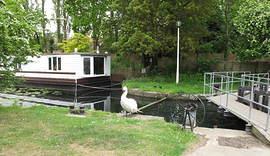 Chichester Marina 2010 (10).JPG