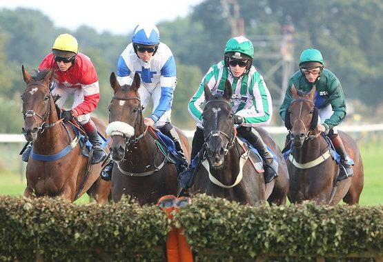 rsz_fontwell_park_races.jpg