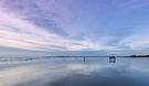 West Wittering beach in winter - 2018-12-24 - Paul Adams 20181224_FDD4629+S.jpg