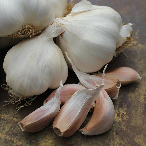 mersley_wight_seed_garlic_the_garlic_farm.jpg