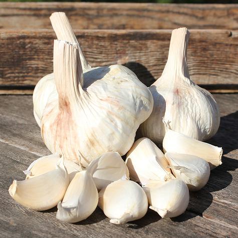 early_wight_seed_garlic_the_garlic_farm.jpg