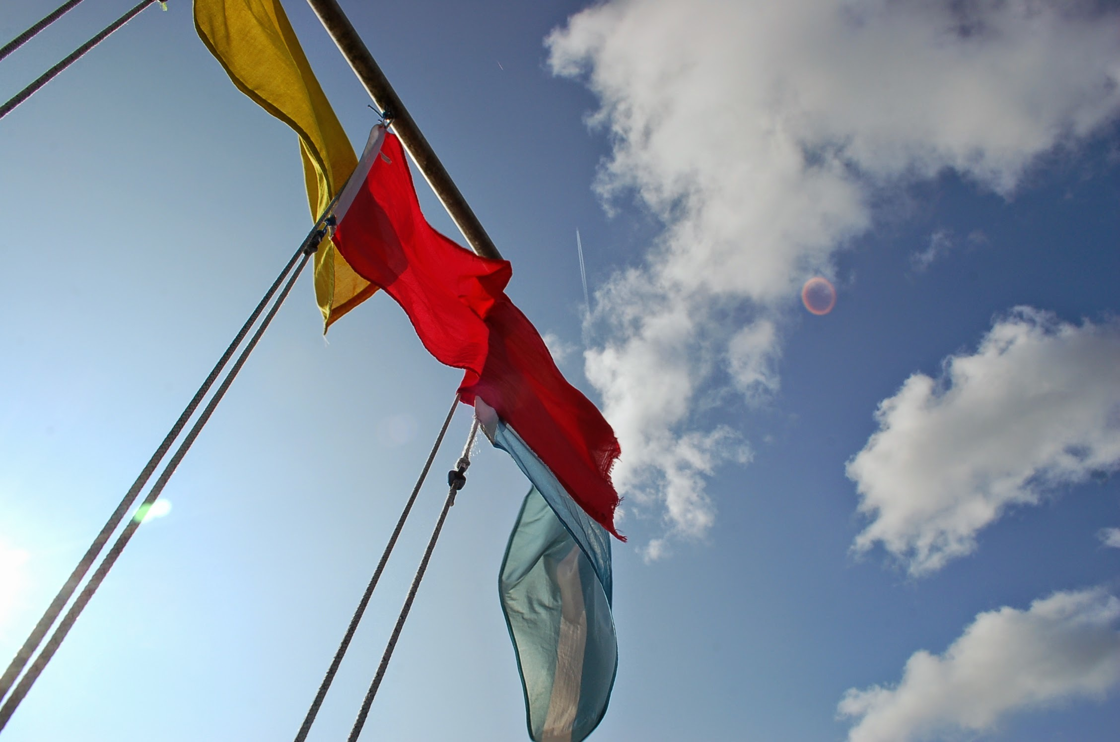 flags on comittee boat title for professional development