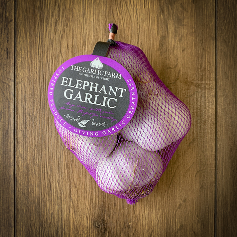 1116_small_elephant_garlic_net_main.jpg