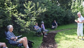 Whyke Orchard