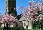 St Marys Church Petworth