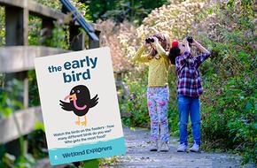 Lookout for Birdies.jpg